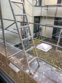 Auch im Außenbereich wird fleißig gearbeitet. Foto: Manuel Molitor/ARCHIFAKTUR Lennestadt GmbH